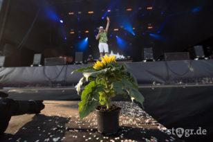 Deichbrand Festival 2016 / Fünf Sterne Deluxe
