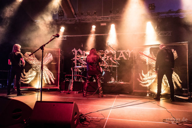 Ragnarök Festival 2017 / Pillorian