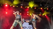 Hammaburg Fest 2019